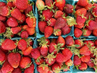"The <a href=""https://www.thestranger.com/events/44082231/tacoma-broadway-farmers-market"">Broadway Farmers Market</a> is one of many places to get fresh produce this summer, like these Sidhu Farms strawberries."