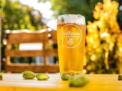 """<a href=""""https://everout.com/stranger-seattle/locations/bellevue-brewing-company/l16666/"""">Bellevue Brewing</a> is just one of many local craft breweries with fresh hop offerings, which are available only for a limited time."""