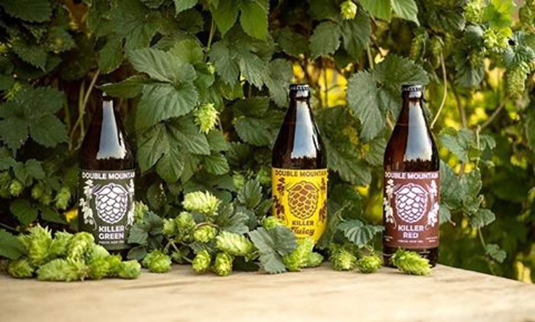 Fresh Hop Beers to Try in Portland Before They're Gone: Fall 2020 Edition - EverOut Portland