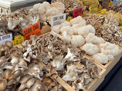 """Stock up on wild mushrooms and more of this season's bounty at <a href=""""https://everout.com/stranger-seattle/events/snohomish-harvested-holiday-market/e38542/"""">Snohomish Harvested Holiday</a>."""