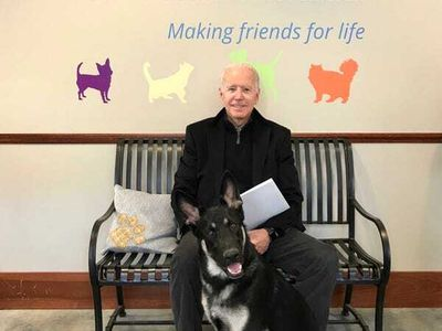 "Before Joe Biden the human gets sworn in as the 46th President of the United States next week, pay tribute to incoming First Dog Major Biden at a <a href=""https://everout.com/portland-mercury/events/major-bidens-virtual-indoguration-party/e40375/"">Virtual Indoguration Party</a> with the Delaware Humane Association this Sunday."