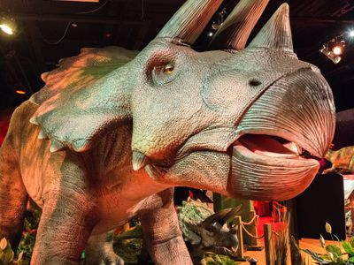 """OMSI's newest exhibition, <a href=""""https://everout.com/portland/events/dinosaurs-revealed/e55060/""""><em>Dinosaurs Revealed</em></a>, opens this Saturday! While tickets are sold out for this weekend, you can still go see the museum's other attractions, or you can try again another weekend&mdash;the dinos aren't going anywhere until September."""