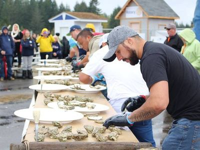 """Get your bivalves, live music, and local microbrews at this weekend's <a href=""""https://www.thestranger.com/events/40855254/oysterfest"""">Oyster Fest</a> in Shelton."""