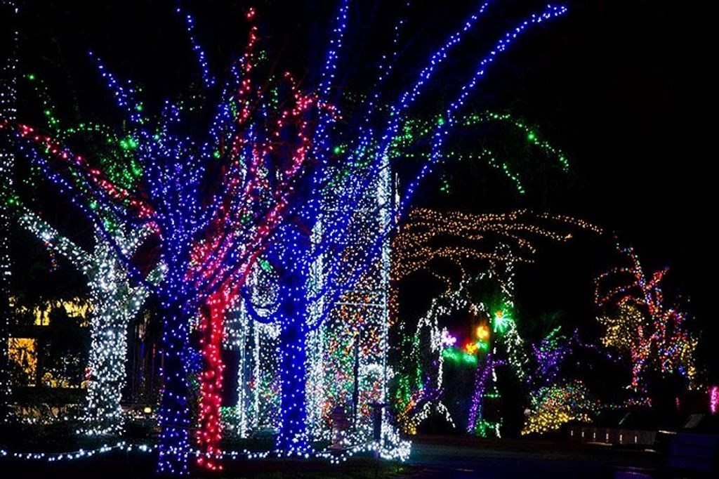 Where Can I Drive To See Neighborhood Christmas Lights Near Puyallup Washington 2021 The 55 Best Places To See Holiday Lights In Seattle In 2019 Everout Seattle