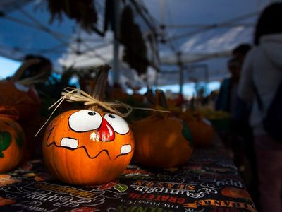 """Take a scenic drive through the gorge in pursuit of all sorts of autumnal delights at the <a href=""""https://everout.com/portland/events/hood-river-valley-harvest-fest/e103617/"""">Hood River Valley Harvest Fest</a>."""
