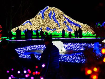 """Take in the spectacle of Christmas with <a href=""""https://www.thestranger.com/events/40857326/zoolights"""">Zoolights</a> at Point Defiance Zoo."""